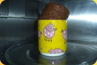 5 - Gâteau au chocolat en 5 minutes
