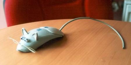 08 Recycler ses vieilles souris et vieux claviers