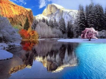 4 saisons dans une photo for Le jardin des 4 saisons pusignan