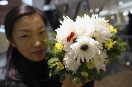 01 - Des chiens faits de fleur - Flower dogs