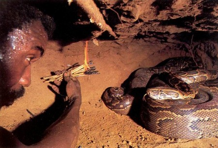 05 - Comment attraper un python