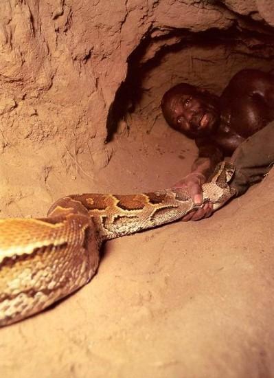07 - Comment attraper un python