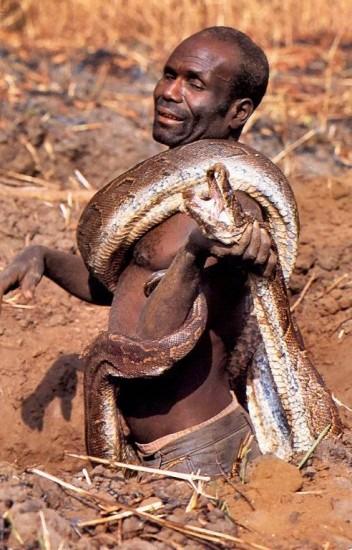 09 - Comment attraper un python
