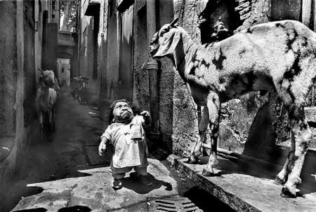 04 - Le plus petit homme au monde